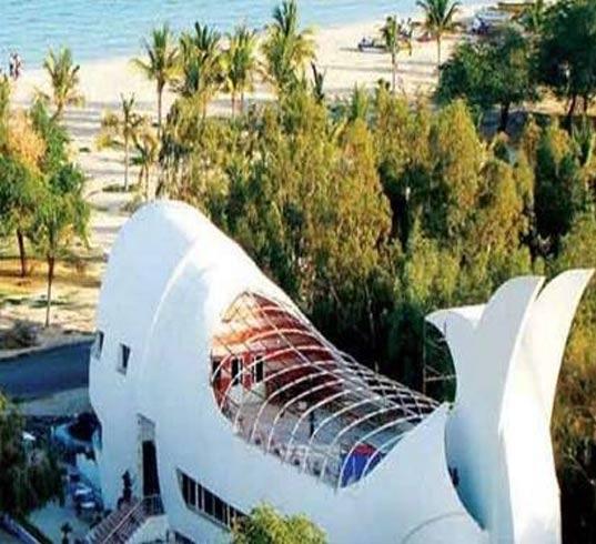 رستوران نهنگ سفید کیش
