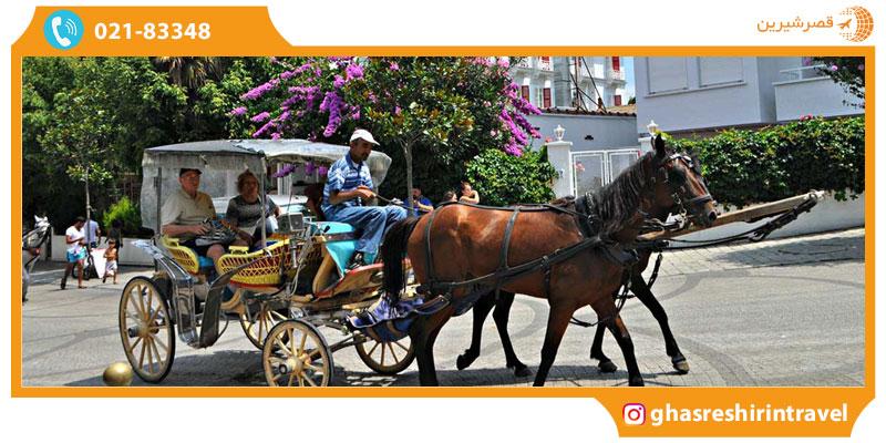 گردش در جزایر پرنس استانبول