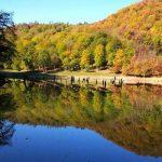 میانشه، دریاچه ای زیبا در میان جنگل های مازندران